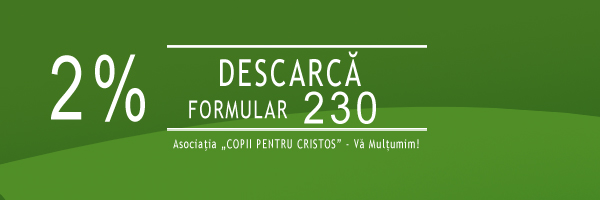DESCARCA FORMULAR 230